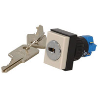 View 31-295-025D: DPDT Rectangle Keylock Switch 5A @ 250VAC