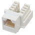 Female RJ45 Straight