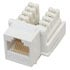 Cable Mount Cat 5E